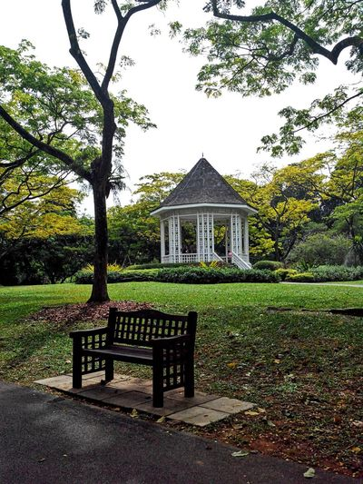 A memory of forever? Gazebo At The Park At The Park Chair Botanical Gardens Garden Photography The Beauty In My Gardens