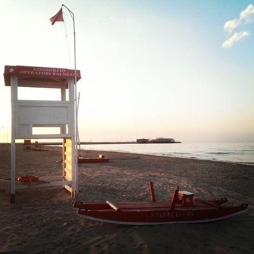 Tutto pronto per il salvataggio di Grillo . Il Pd ha alzato bandiera rossa. Rimini Laspiaggiabuona