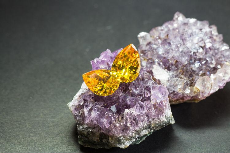 Close-up of purple on rock