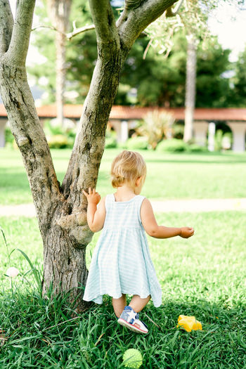 Rear view of baby girl on tree
