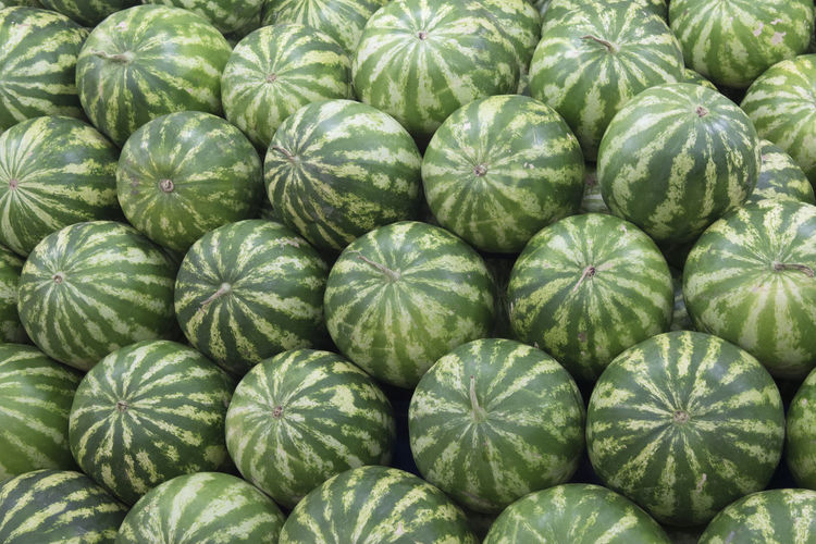 Full frame shot of watermelons for sale