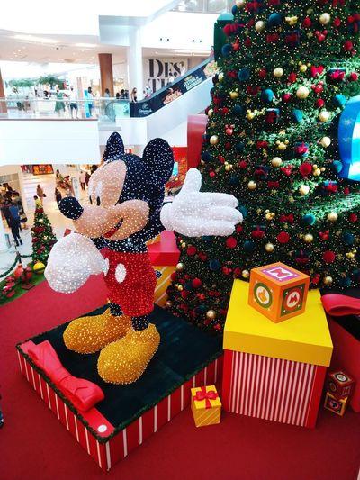 Christmas tree in box