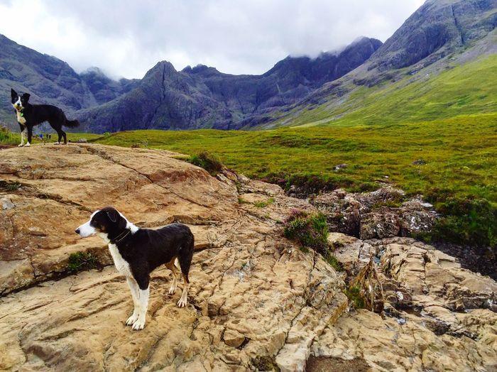 Isle Of Skye Scotland Deepscottishlove ILoveScotland