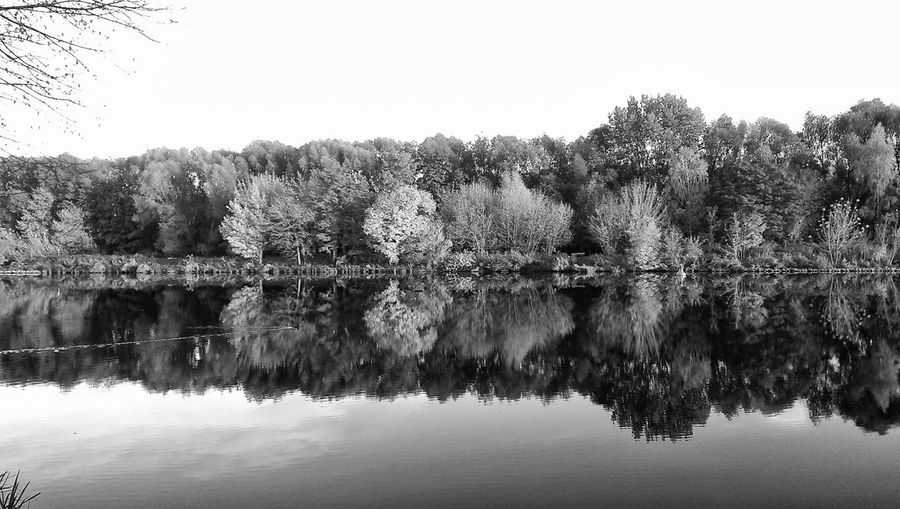 light and reflection Search The DuckReflection Tree Water Lake Nature Outdoors Clear Sky Tranquility No People Scenics Sky Day Beauty In Nature Blackandwhite Photography Reflection Lake Autumn🍁🍁🍁 Reflection Teltowkanal in Berlin, Germany Black And White Friday