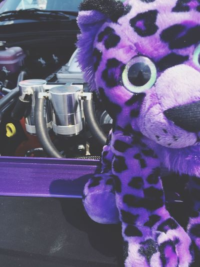 MeinAutomoment EyeEm Best Shots Gettyimages My Point Of View Automobile Moments Memories Car Cars Purple