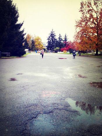 University Campus Sous La Pluie Grenoble un matin pluvieux d automne a la fac..
