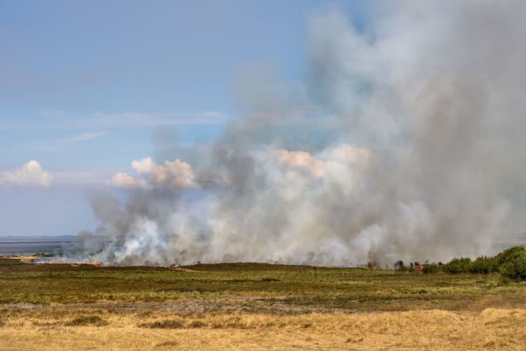 Abbrand alter und trockener Pflanzen am Morsum Kliff Deutschland Morsum-Kliff Sylt, Germany Burning Environment Fire Fire - Natural Phenomenon Heide Heide Abbrand Land Landscape Morsum Nature Outdoors Sky Smoke - Physical Structure Sylt