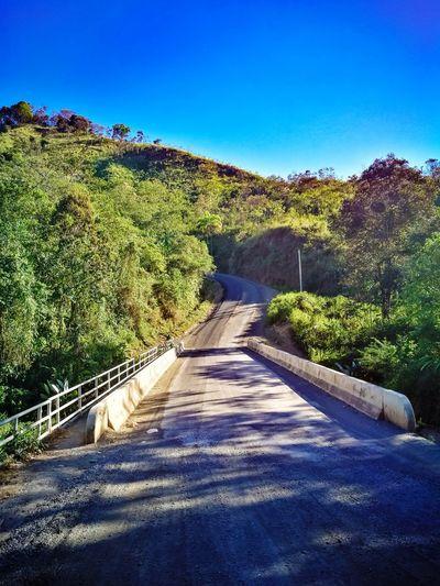 bridge Calle