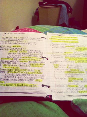 Up studying !
