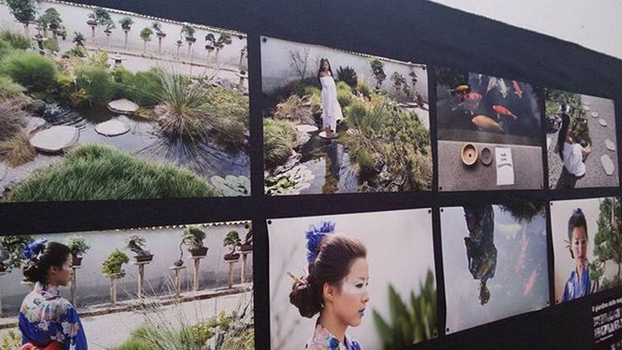 Mostra fotografica Festivaldelloriente Mostradoltremare Napoli Chinese Japan Taiwan