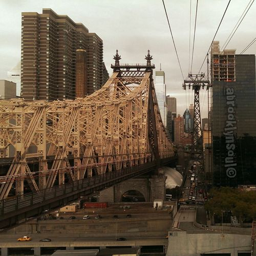 From Roosevelt Island to Manhattan Sightseeing Boarding Sky High NYC