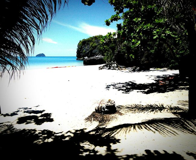 Sea Beach Horizon Over Water Water Tree Nature Beauty In Nature Palm Tree Nature Photography Outdoors Tranquility Thailand Power In Nature Sky Sand Scenics Tranquility No People Vacations Day
