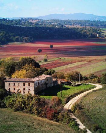 PTS free Tuscany Siena Monteriggioni Beauty In Nature Nature Autumn
