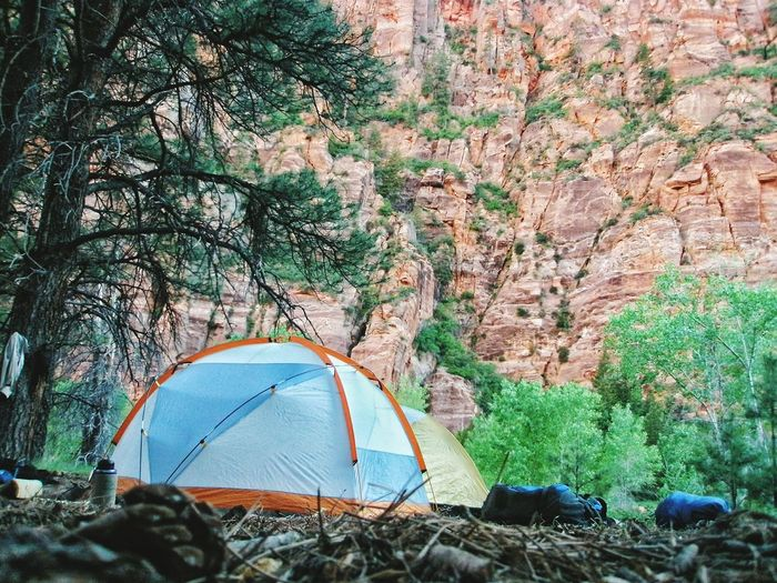 Zion National Park Camping Campsite Tent Back Country Backpacking Low Angle Shot Nature EyeEm Nature Lover The Great Outdoors - 2016 EyeEm Awards Miles Away The Great Outdoors - 2017 EyeEm Awards