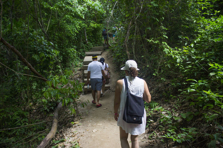 Rear View Of Friends Walking On Footpath In Forest