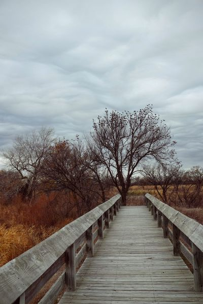 Photo essay - A day in the life. Platte River Grand Island, Nebraska November 6, 2016 A Day In The Life America Beauty In Nature Bridge - Man Made Structure Camera Work Cloud - Sky Eye Em Nature Lover Eye For Photography MidWest Nature Nebraska No People On The Road Outdoors Photo Diary Photo Essay Railing Road Trip Seasons Storytelling Tranquility Travel Photography Visual Journal Walkway Wooden