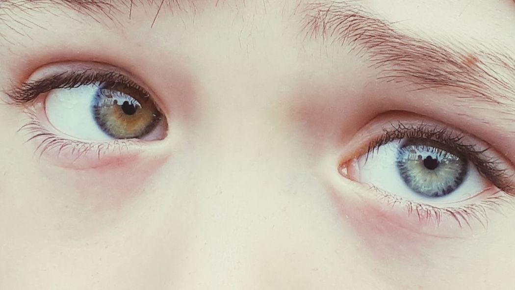 Love the different eyes EyeEm Gallery EyeEm Selects EyeEm Masterclass Different Eyes Different Eye Color Verschiedene Augen Verschiedene Farben Unterschiedlich EyeEm Best Shots EyeEmNewHere Mystical Mystic Eyes Heterochromia Heterochromie EyeEm Selects Eyelash Eyeball Human Eye Eyebrow Eyesight Portrait Beauty Beautiful Woman Iris - Eye Females Eyelid The Portraitist - 2018 EyeEm Awards