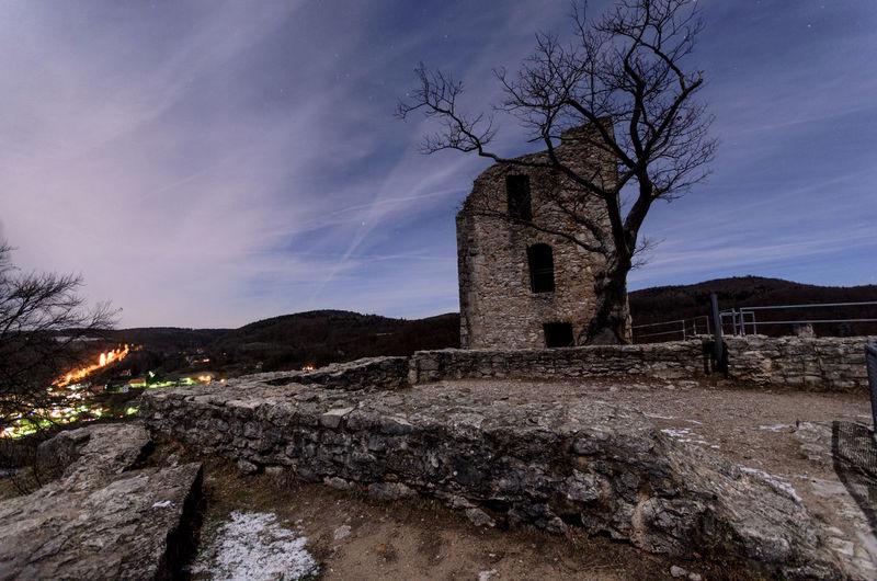 Tree Sky Architecture Built Structure Ancient Civilization Old Ruin Ancient History Castle