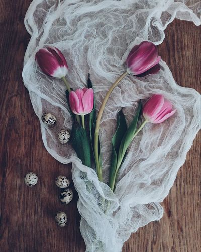EyeEm Selects StillLifePhotography Still Life Stillife Lifestyles EyeEm Best Shots EyeEmNewHere Eye4photography  Table Vintage Photo Vintage Style Vintage Flower No People Beauty In Nature Close-up Pink Color
