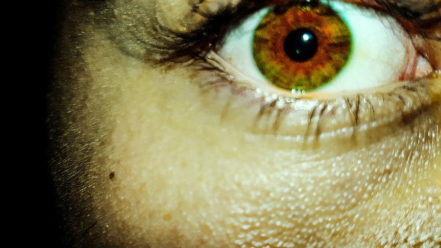 Eyes Eye Human
