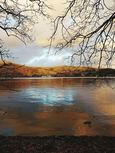 Windermere shoreline. Lake District Nature Waterscape Countryside Colours Of Nature