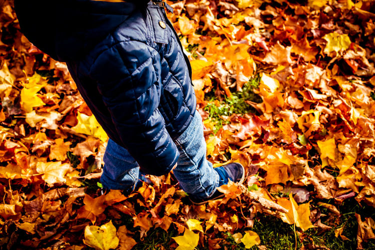 Autumn Autumn Colors Autumn Leaves Boy Child Fall Leaves Low Section Nature Outdoors Shoes Walking Walking In Leaves Walking On Leav Walking Through Leaves