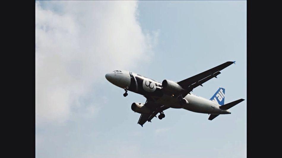 V air A320-200 B-22320 Yeah!