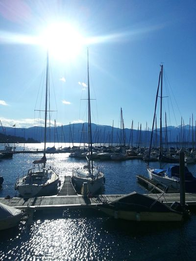 Sailboats moored on harbor by sea against sky