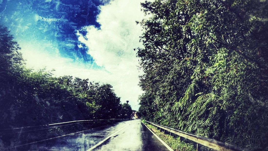 Beauty In Nature The Way Forward Road Tree Transportation Day No People Nature Sky Outdoors Landscape Beauty In Nature