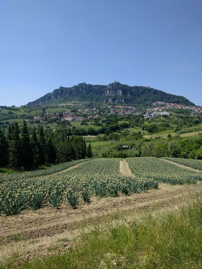 San Marino Country.... Agriculture Field Nature Beauty In Nature Landscape Springtime