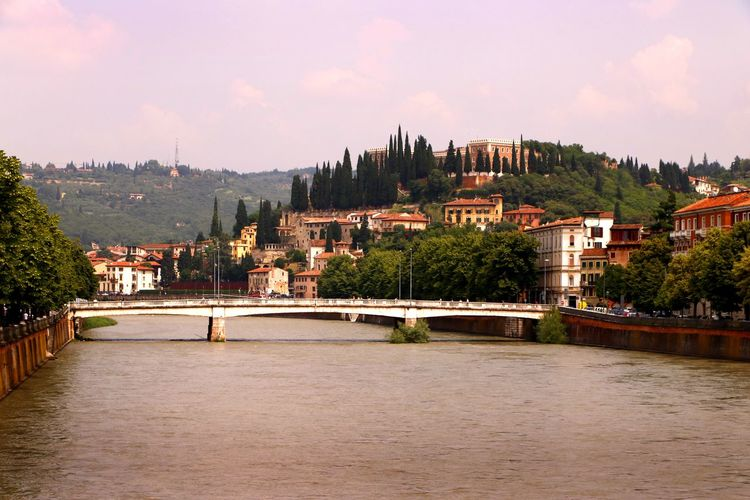 The castle of San Pietro on a hill as viewed across the river Adige in Verona Italy Travel Photography Arch Bridge Architecture Bridge Bridge - Man Made Structure Building Building Exterior Built Structure City Cityscape Cloud - Sky Connection Nature No People Outdoors Place Residential District River San Pietro Sky Tourist Destination Travel Destination Tree Water Waterfront