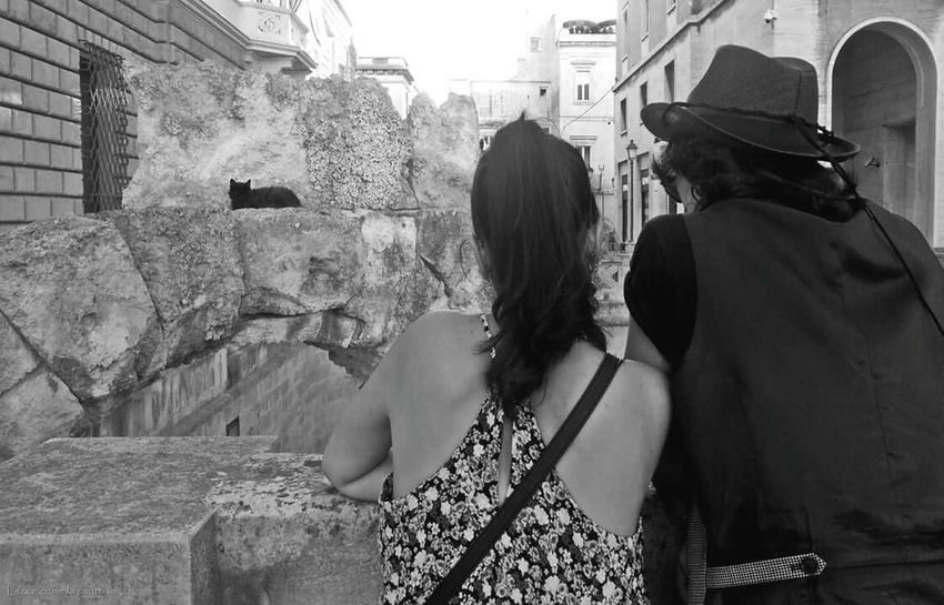 More on https://www.facebook.com/leccecomelacantoio/ Lecce Lecce - Italia Lecce City Leccecomelacantoio Lecce B/w Lecce Anfiteatro Romano Lecce (Italia) Couple Cat Love Humansoflecce People Watching People Photography People And Places Bnw Bnw_collection Bnwphotography Blackandwhite Blackandwhite Photography
