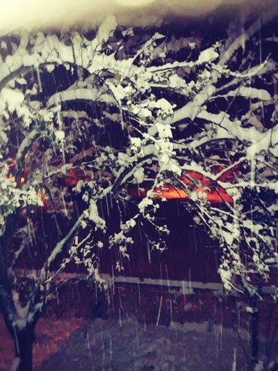 """""""Hatırlamak"""" değil başka bir şey bu; """"Unutmamak"""" belki... bazılarıyla yeniden tanışmalı, pişmanlıklarından bitap düşmüş """"Keşke""""li nefeslerin hatrına... 🍷🌿 Winter Winter2016 Goodnight Goodnigt🌛"""