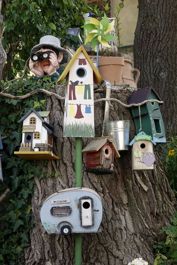 Bird Box Birdhouses Childhood Close-up Day Nature One Person Outdoors People Real People Text Tree Tree Trunk