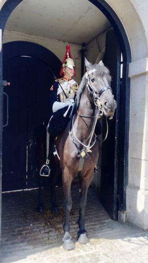Horse guard cavalry