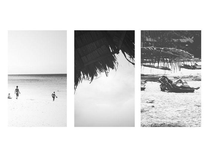 Beach Sea Nature Blackandwhite Lifestyles Thatched Roof Sunbathe Sun
