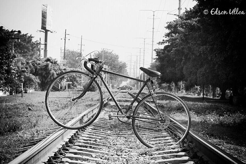 Bike Bikeride