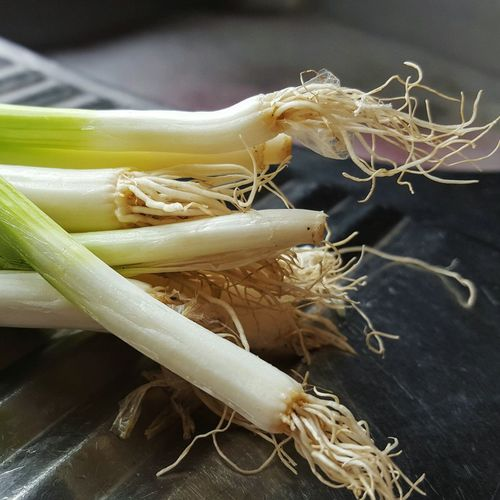 Close-Up Of Scallions On Sink