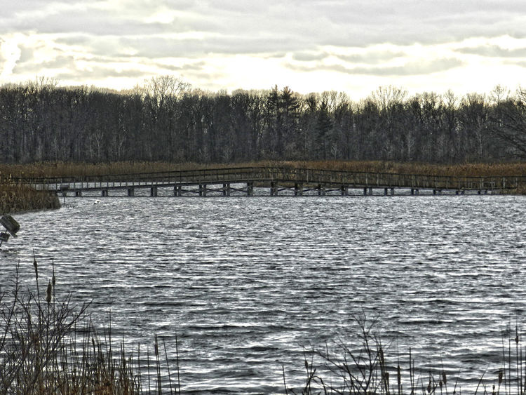 Over Choppy Waters Beauty In Nature Bridge Choppy Waters Cloud - Sky Cloudy Lake Lakeshore Landscape No People Outdoors Scenics Water Michigan Bare Tree Bare Trees Winter Bridges Marsh Waterfront Rippled Ripples Windy Cold Sunset Sky