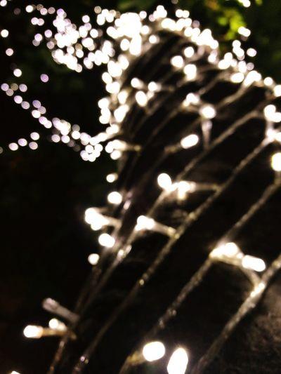 Christmas Lights Bokeh Lights Dark Dot Shiny Black Background Defocused Christmas Decoration Close-up Glitter Shining Light