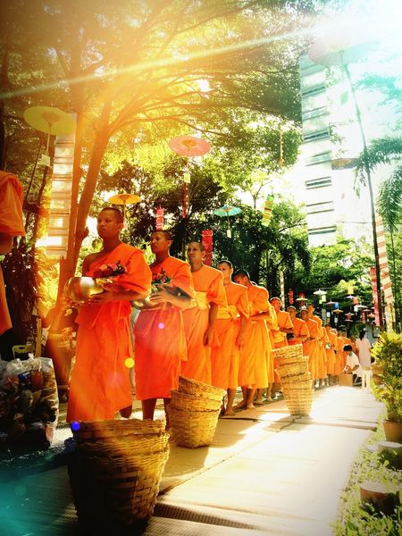 Orange Color Tree Real People Outdoors Men Sunlight Day Women Full Length Young Women Young Adult Adult Monk  Temple Buddhism Offering Food Merit Making Religion Buddhist Thailand Thai Rejoice Share Merit Share