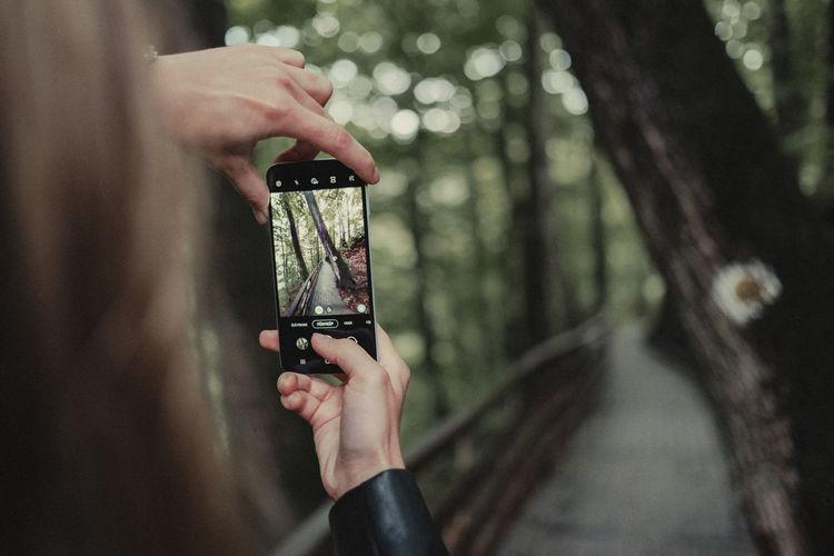 Take a photo in a photo.