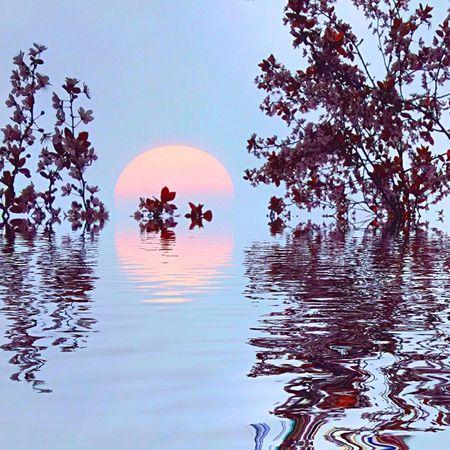 Sunshine Universodepequeñascosas EyeEmBestEdits EyeEm Nature Lover My Art