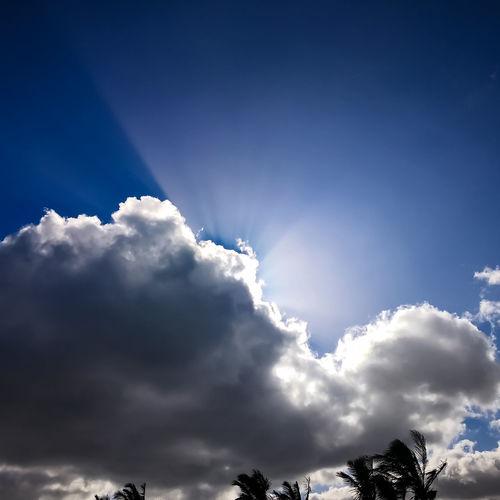 Raggi Di Sole Rays Of Light Mountain Tree Blue Bird Sky Cloud - Sky Close-up Heaven Sky Only