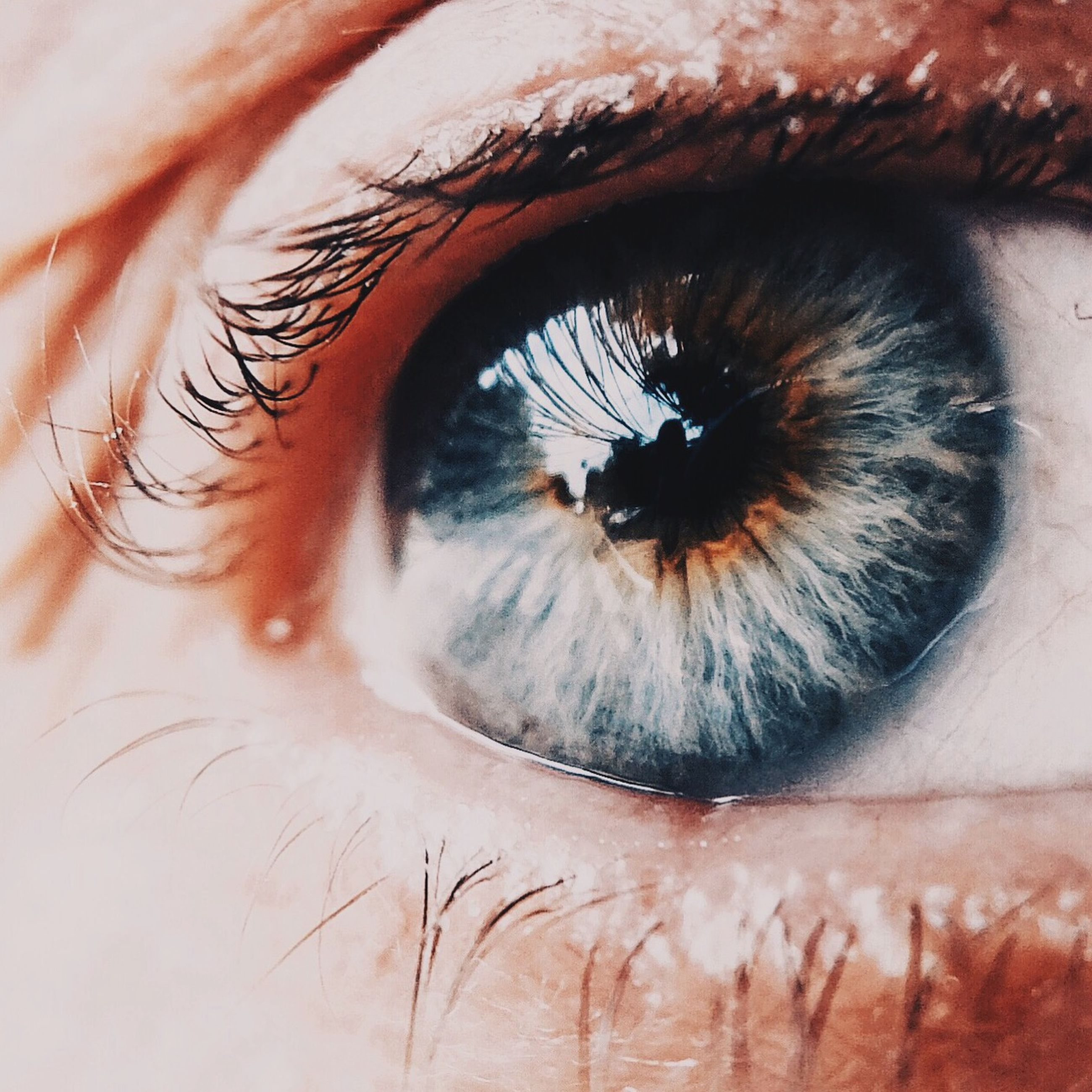 human eye, eyelash, close-up, eyesight, part of, sensory perception, looking at camera, human skin, portrait, extreme close-up, eyeball, human face, iris - eye, extreme close up, eyebrow, vision, lifestyles