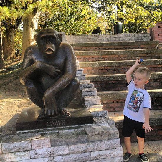 The Storyteller - 2014 Eyeem Awards At The Zoo Monkeybusiness  Belgrade Kristijan capitalcity serbia