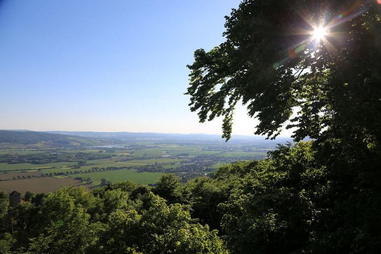 View from Paschenburg, Weser Hills, Northern Germany Beauty In Nature Clear Sky Day Forest Landscape Nature No People Outdoors Scenics Sky Tranquil Scene Tranquility Tree Weser Hills Weser River Weserbergland