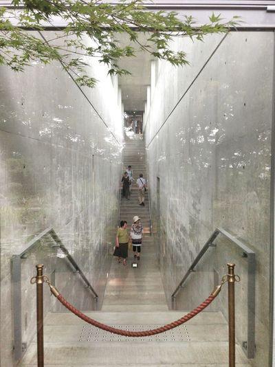 Architecture Museum Landscape