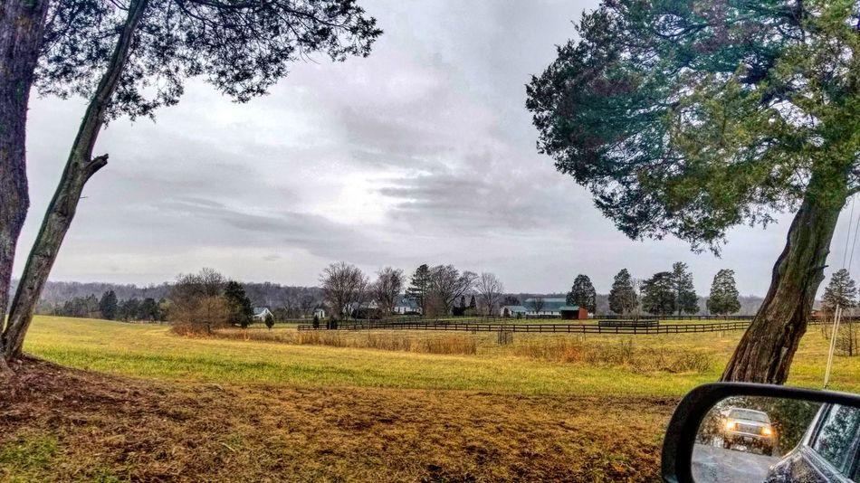 Tree Field Agriculture Sky Cloud - Sky