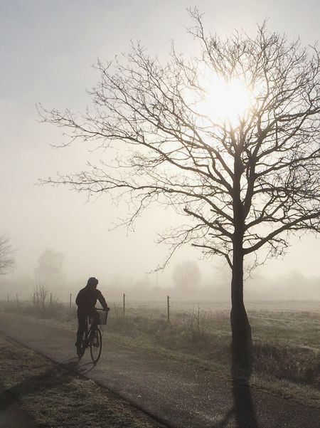 The fog | the sunrise | the bike rider Silhouette Landscape_photography EyeEm Nature Lover Landscape_Collection Sunrise Sunrise_sunsets_aroundworld EyeEmbestshots AMPt_community Foggy Morning Bike